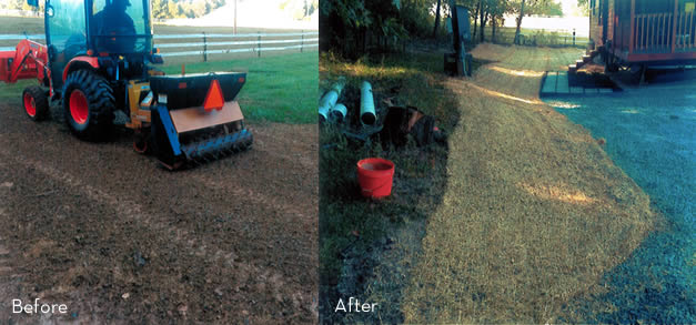 Grass Planting Services in Maryland
